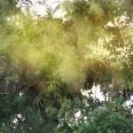 花粉症対策おすすめグッズ、目の痒み,肌荒れなどの症状にはコレ!