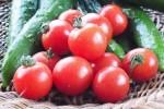 トマトときゅうりの「はちみつマリネ」レシピは我が家の人気サラダ!